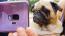 BuzzFeed și The Dodo transformă momentele obișnuite în momente extraordinare cu ajutorul opțiunii Super Slow-mo a telefoanelor Samsung Galaxy S9 și S9+